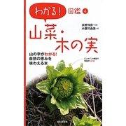 山菜・木の実(わかる!図鑑〈4〉) [全集叢書]