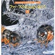 ファーブル昆虫記の虫たち〈5〉(Kumada Chikabo's World) [絵本]