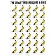 ヴェルヴェット・アンダーグラウンド&ニコ―もっとも嫌われ、もっとも影響力のあったアルバム(P-Vine BOOKs) [単行本]