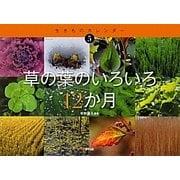 草の葉のいろいろ12か月(生きものカレンダー〈5〉) [絵本]
