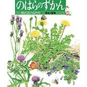 のはらのずかん―野の花と虫たち(絵本図鑑シリーズ〈12〉) [絵本]