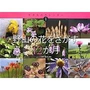 野山の花をさがす12か月(生きものカレンダー〈1〉) [絵本]