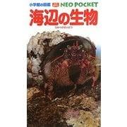 海辺の生物(小学館の図鑑NEO POCKET) [図鑑]