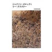 ジャクソン・ポロックとリー・クラズナー(岩波アート・ライブラリー) [全集叢書]