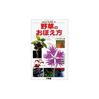 野草のおぼえ方〈下〉(フィールド・ガイド〈19〉) [図鑑]