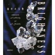 BRIGHTNESS―地中の宝物 [単行本]