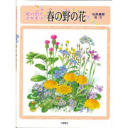 花の色でさがそう 春の野の花(しぜんたんけんずかん〈1〉) [図鑑]