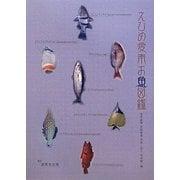 えひめ愛南お魚図鑑 [図鑑]