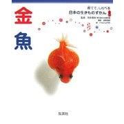 金魚(育てて、しらべる日本の生きものずかん〈14〉) [図鑑]