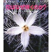 花はなぜ咲くのか?(Nature Discovery Books) [単行本]