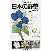 日本の野草〈夏〉(フィールド・ガイド〈5〉) [図鑑]