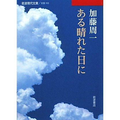 ある晴れた日に(岩波現代文庫) [文庫]