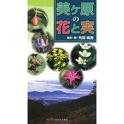 美ヶ原の花と実 [図鑑]