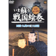 いま蘇る戦国絵巻 16 四国・九州の巨大城郭