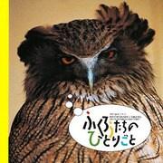ふくろうたちのひとりごと(HOKKAIDO BIRDING BOOK SERIES) [単行本]