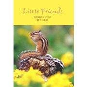 虹の森のシマリス―Little Friends [単行本]