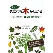葉っぱで気になる木がわかる―Q&Aで見分ける350種樹木鑑定 [図鑑]