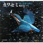 カワセミ―青い鳥見つけた [絵本]