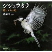 シジュウカラ―庭にくる小鳥 [絵本]