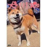犬川柳 柴犬あるある[編]-五・七・五で詠むイヌゴコロ!(タツミムック) [ムックその他]