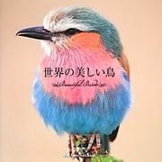 世界の美しい鳥 [単行本]