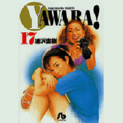 YAWARA 17(小学館文庫 うB 27) [文庫]