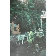 水―中村一弘写真集 [単行本]
