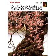 名花・名木を訪ねる(カラーブックス) [文庫]