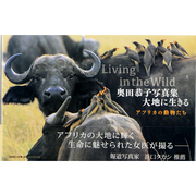 奥田恭子写真集大地に生きる-アフリカの動物たち [単行本]