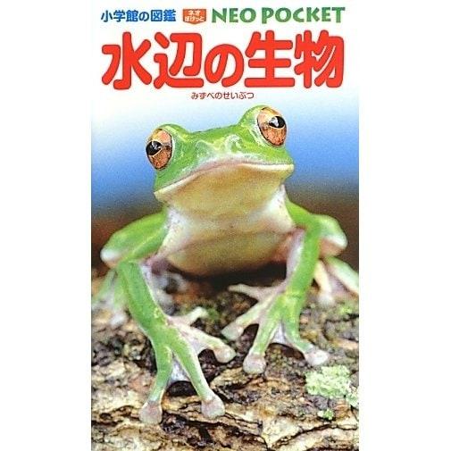 水辺の生物(小学館の図鑑NEO POCKET) [図鑑]