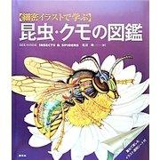 細密イラストで学ぶ昆虫・クモの図鑑 [全集叢書]