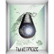 TM NETWORK 30th 1984- THE BEGINNING OF THE END