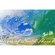 Waves of North Shore [単行本]