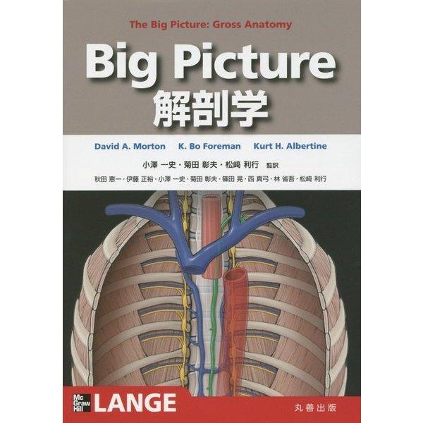 Big Picture解剖学 [単行本]