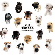 CL901 THE DOG ALL STARカレンダー [コミック]