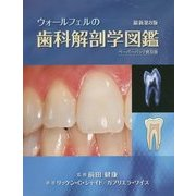 ウォールフェルの歯科解剖学図鑑 ペーパーバック普及版 [単行本]