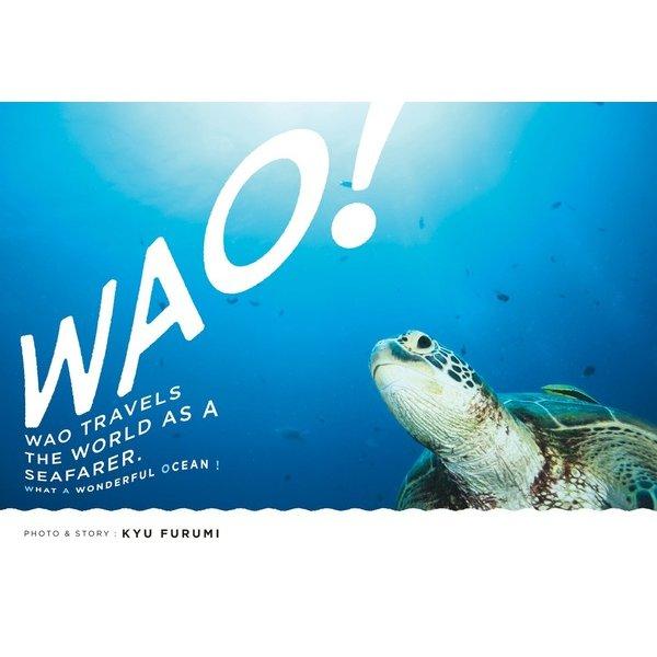 WAO!-海の旅人ワオの物語 [ムックその他]