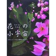花の小宇宙―スキャナーで見る植物の創造力 荒木克己作品集 [単行本]