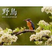 野鳥カレンダー 2016 [ムックその他]