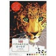100パズルぬりえ&点つなぎ〈2〉多彩な色(アートセラピーシリーズ) [単行本]