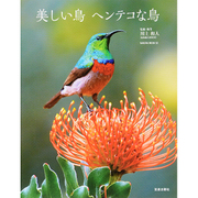 美しい鳥 ヘンテコな鳥: サクラムック [ムック・その他]