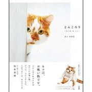 どんころり [単行本]