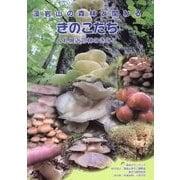 藻岩山の森林と関わるきのこたち&札幌近郊林のきのこ [図鑑]