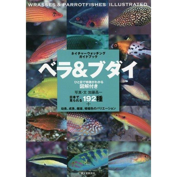 ベラ&ブダイ―日本で見られる192種+幼魚、成魚、雌雄、婚姻色のバリエーション(ネイチャーウォッチングガイドブック) [図鑑]
