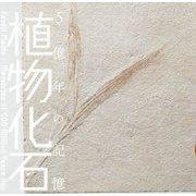 植物化石―5億年の記憶(LIXIL BOOKLET) [全集叢書]