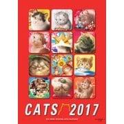 2017年度版 村松誠 猫カレンダー [カレンダー]