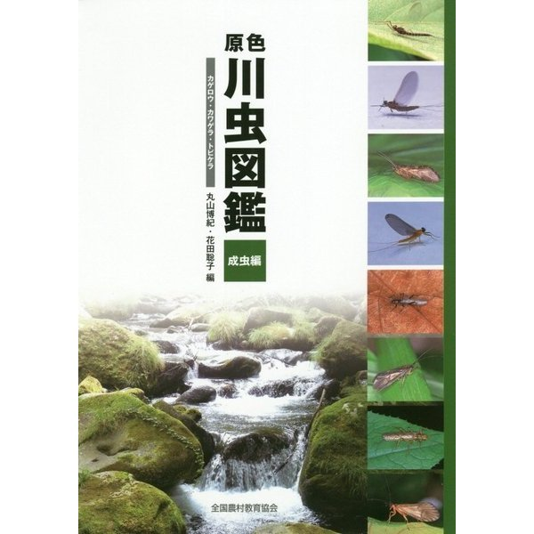 原色川虫図鑑 成虫編―カゲロウ・カワゲラ・トビケラ [図鑑]