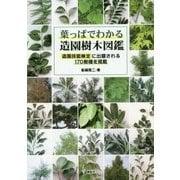 葉っぱでわかる造園樹木図鑑―造園技能検定に出題される170樹種を掲載 [単行本]