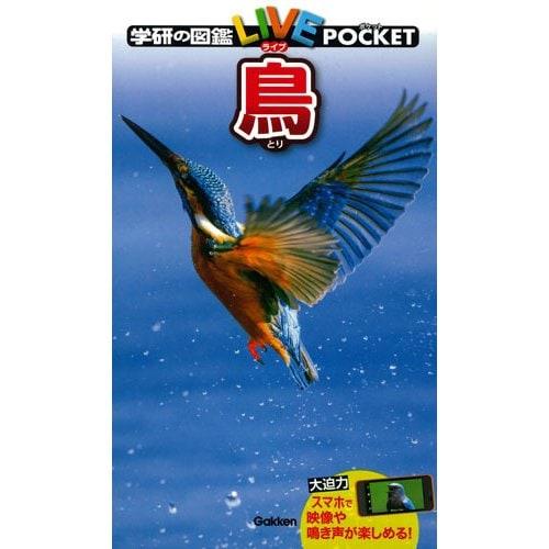 鳥(学研の図鑑LIVE(ライブ)ポケット〈6〉) [図鑑]