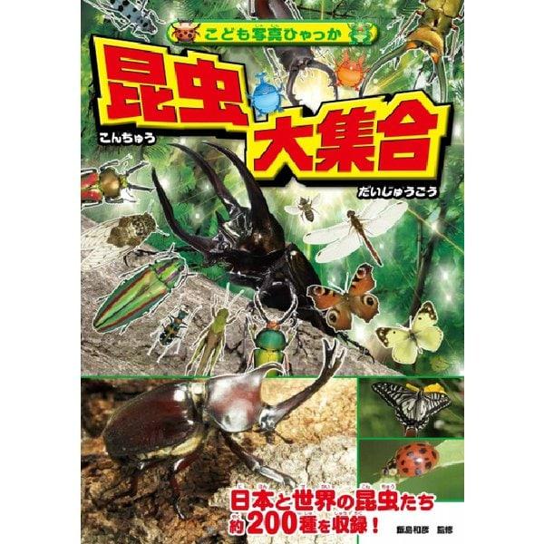 昆虫大集合(こども写真ひゃっか) [絵本]